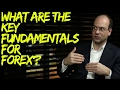 What are the Key Fundamentals for Currencies?