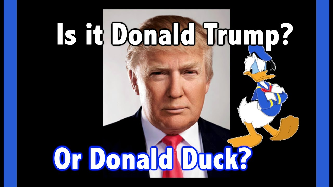 Image result for donald the duck and donald trump