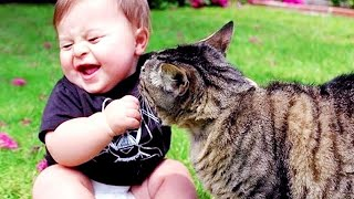 Cutest Babies Play With Dogs And Cats Compilation || Cool Peachy