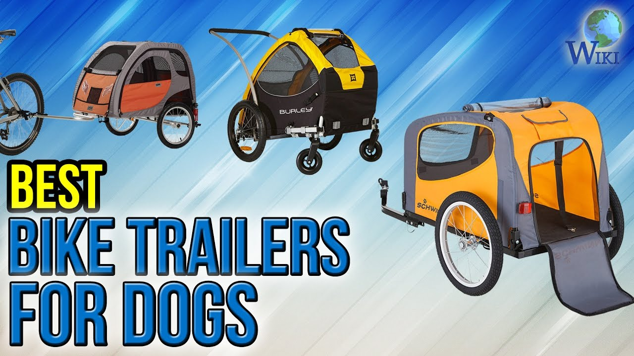 8 Best Bike Trailers For Dogs 2017