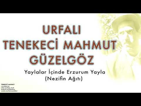 Urfalı Tenekeci Mahmut Güzelgöz - Yaylalar İçinde ...   [ Tenekeci Mahmut © 2007 Kalan Müzik ]