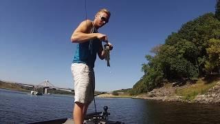 Coralville Reservoir Bass Fishing