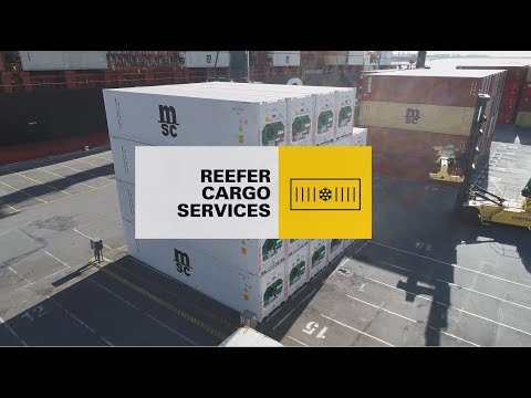 Reefer Containers - Refrigerated Transport Services | MSC