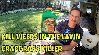 HOW TO KILL WEEDS and CRABGRASS Without Killing Grass - Weed Control