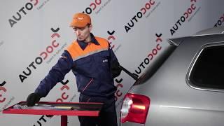 Reemplazar Plumas limpiaparabrisas VW PASSAT: manual de taller