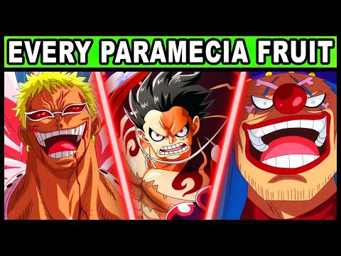 All Paramecia Users And Their Powers Explained! (One Piece Every Devil Fruit)