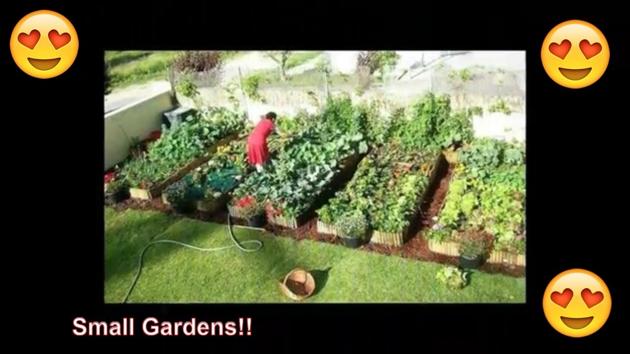 30 Small Garden Ideas on a Budget for Vegetables