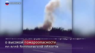 В Воронеже загорелась лесопосадка