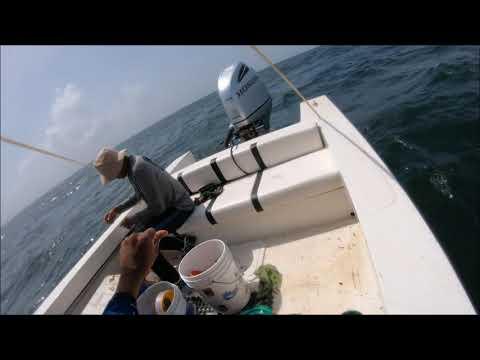 Moruga Trinidad Fishing Expedition