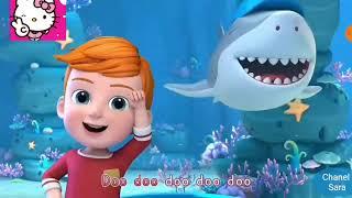 Baby Shark Dance + Nhạc Sôi Động + Song Music Video !