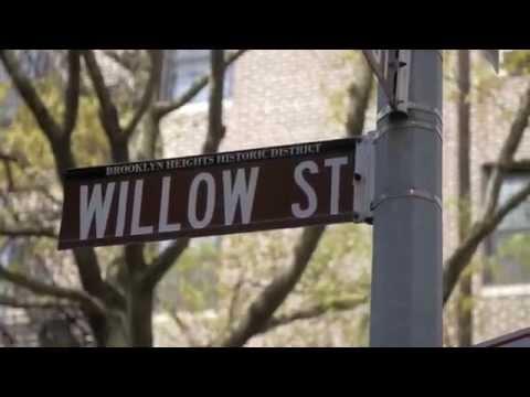 A Slice of Brooklyn Neighborhood Tour