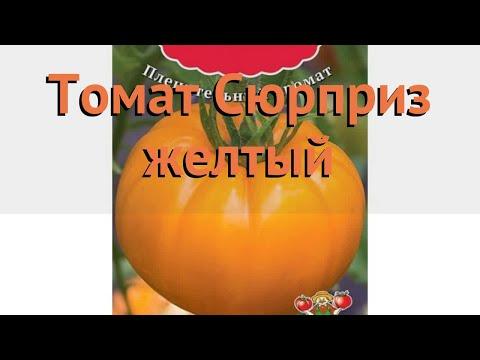 Томат обыкновенный Сюрприз желтый 🌿 обзор: как сажать, семена томата Сюрприз желтый