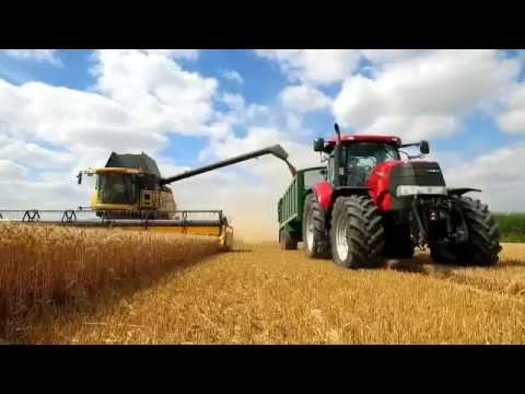Ascra Xpro - For the best disease control and biggest yields