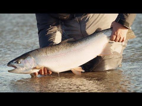 Swing Season - Patagonian Steel - Sage Fly Fishing