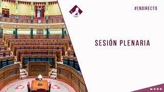 Sesión Plenaria (29/10/2020)