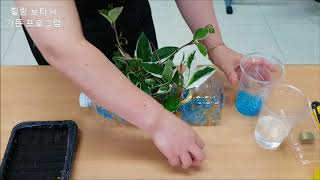 14  페트병 수경재배분 만들기