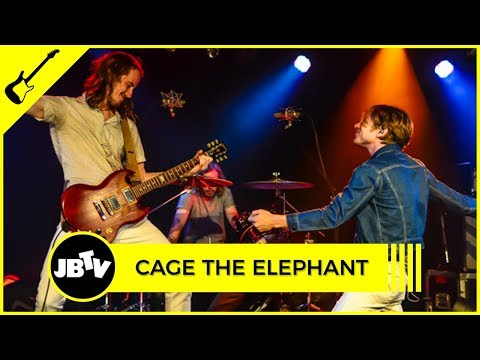 Elephant the cage at live vic the download