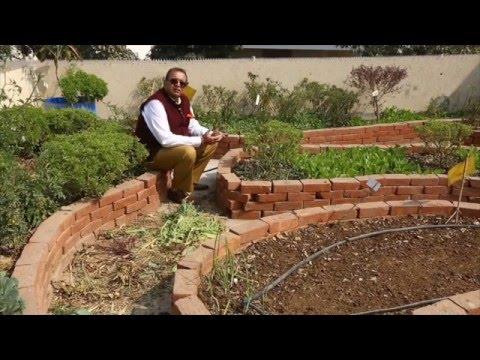 my garden in hindi