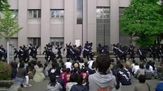 福井大学よっしゃこい 2017「輝咲」 2017/5/27.28 福井大学にて行われた ...