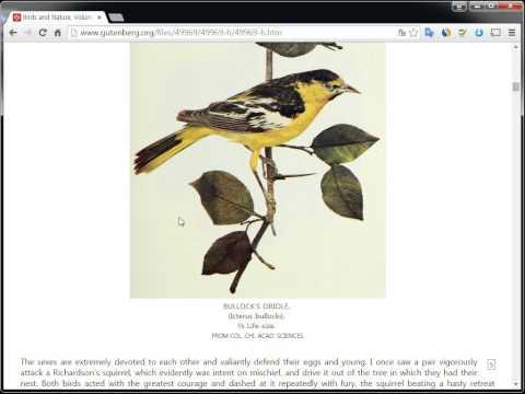 구텐베르크 프로젝트(Free EBooks By Project Gutenberg)