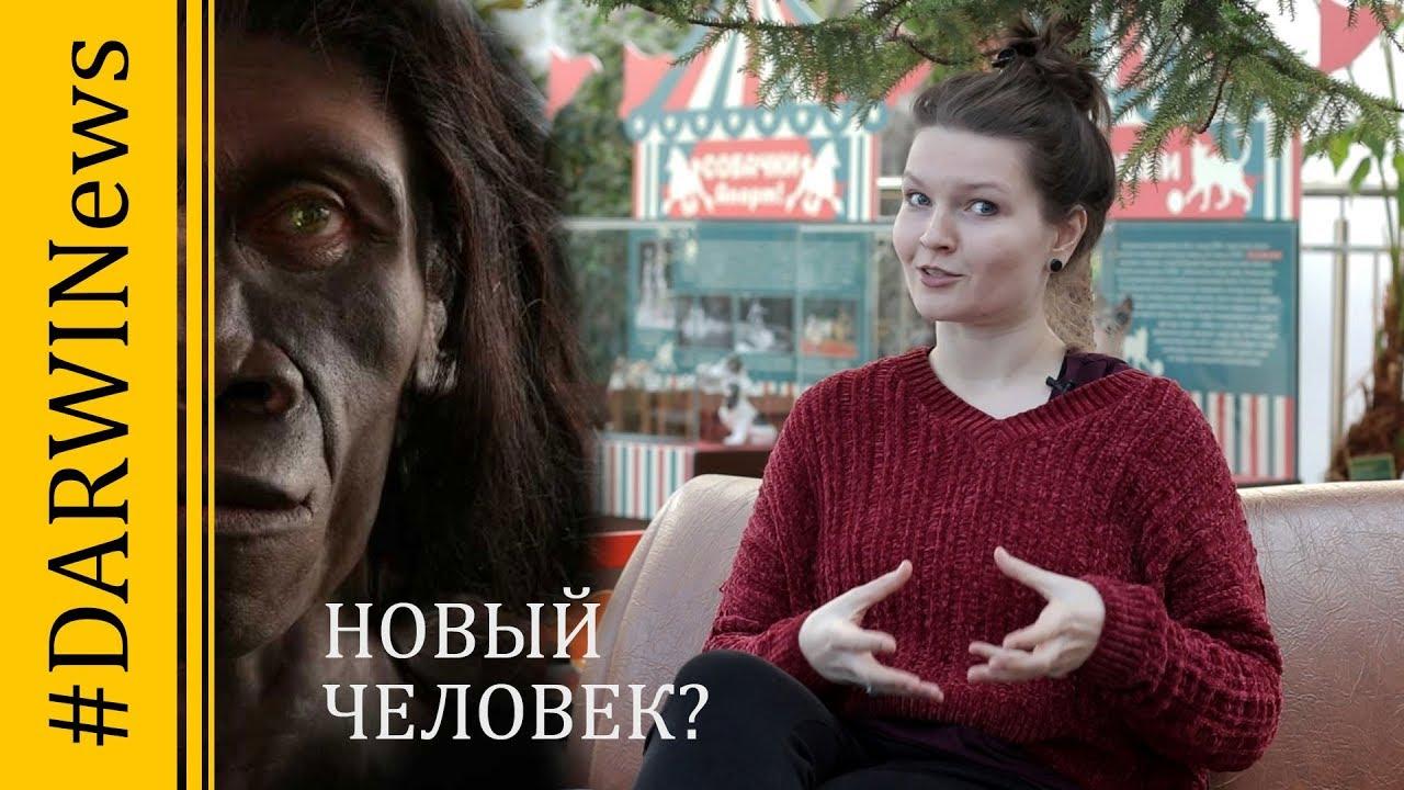 Тайна Салхита: найден новый вид древнего человека? Елена Сударикова. #DARWINews