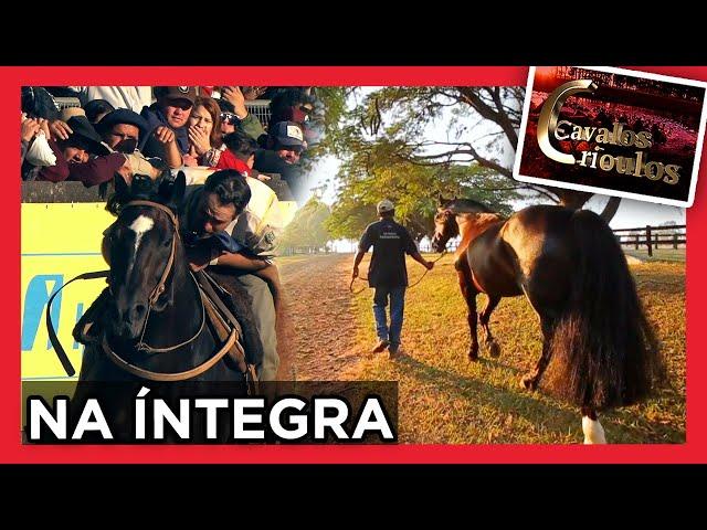 PROGRAMA CAVALOS CRIOULOS- INÉDITO 20/06/2021