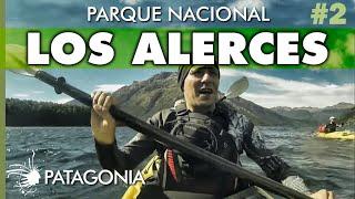 El BOSQUE MILENARIO, Parque Nacional Los Alerces | Capítulo 2 | Hoy No Duermo en Casa