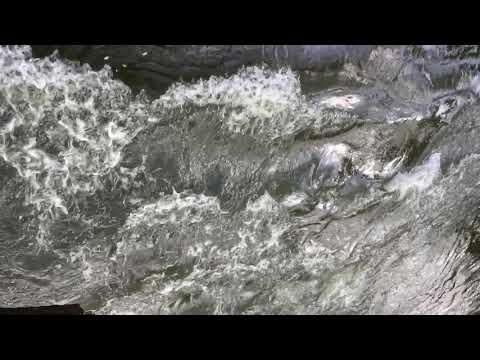 Slow Mo River
