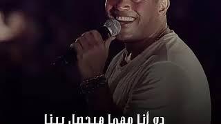 عمرو دياب - اديني رجعتلك 🎶 حالة واتس