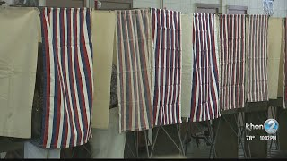 Hawaii Supreme Court weighs in on two election races
