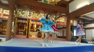 撮影場所 高松市御坊町2-1 (高松興正寺別院) 撮影日 2017/04/01.
