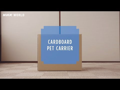 #23 Cardboard Pet Carrier - HOW TO CRAFT SAFETY