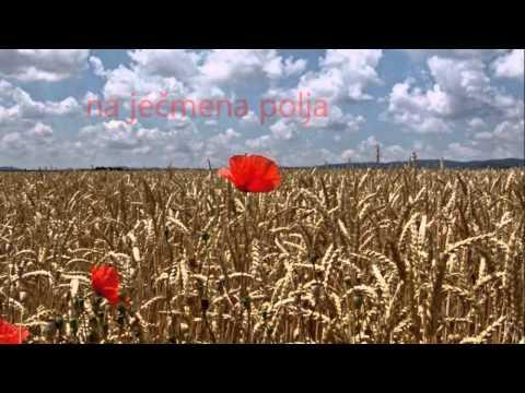 Sting - Fields Of Gold (Prevod)