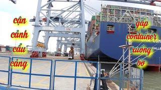 Cận cảnh cẩu cảng gấp container từ tàu xuống