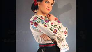 Oana Carmen Bozga - Ridica-voi ochii mei la Ceruri