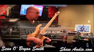 Shaw Audio Sean O Bryan Smith Signature All Tube Bass Preamp prototype