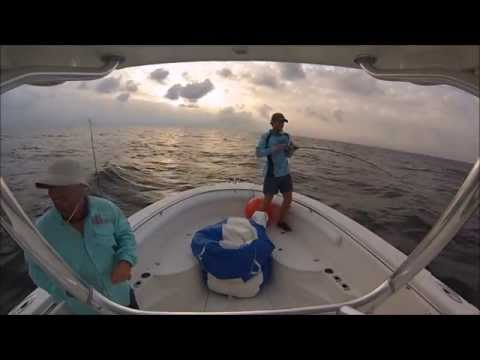 Alabama Deep Sea Fishing Rodeo 2014