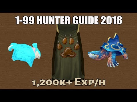1-99 Hunter Guide 2018 [OUTDATED] [Runescape 3]