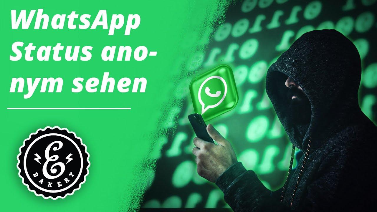 Zu anschauen ohne whatsapp werden gesehen flugmodus status Whatsapp Status