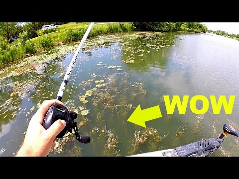 BASS FISHING A Small Lake With HUGE Potential!!!