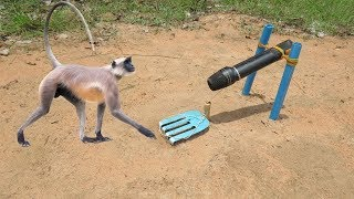 DIY Simple Monkey Trap Using Microphone That (Work 100%) - How To Make a Simple Monkey Trap