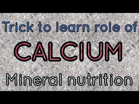 Trick to learn role of calcium in plants/ mineral nutrition.