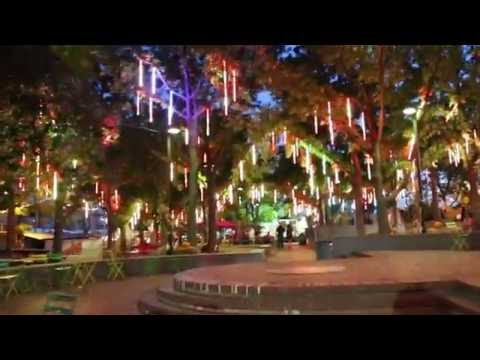 Cole Selleck - Spruce Harbor Park Opening Date