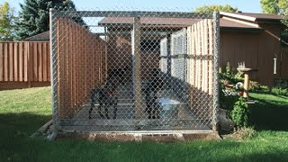 Easy To Build Dog House With Recycled Materials