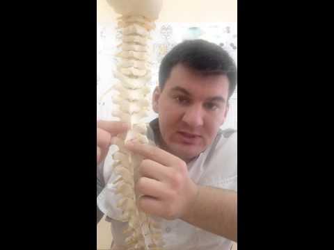 Как обнаружить смещение позвонков?  How to detect the displacement of the vertebrae?