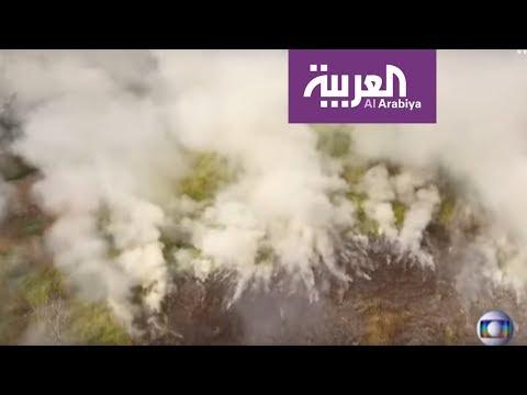 رئة الأرض تستغيث.. الأمازون يصارع حرائق قياسية  - نشر قبل 25 دقيقة