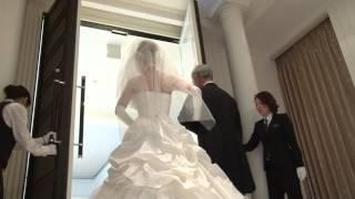 T&Gには、一生に一度の結婚式をおふたりと同じ想いで迎えるスタッフが...