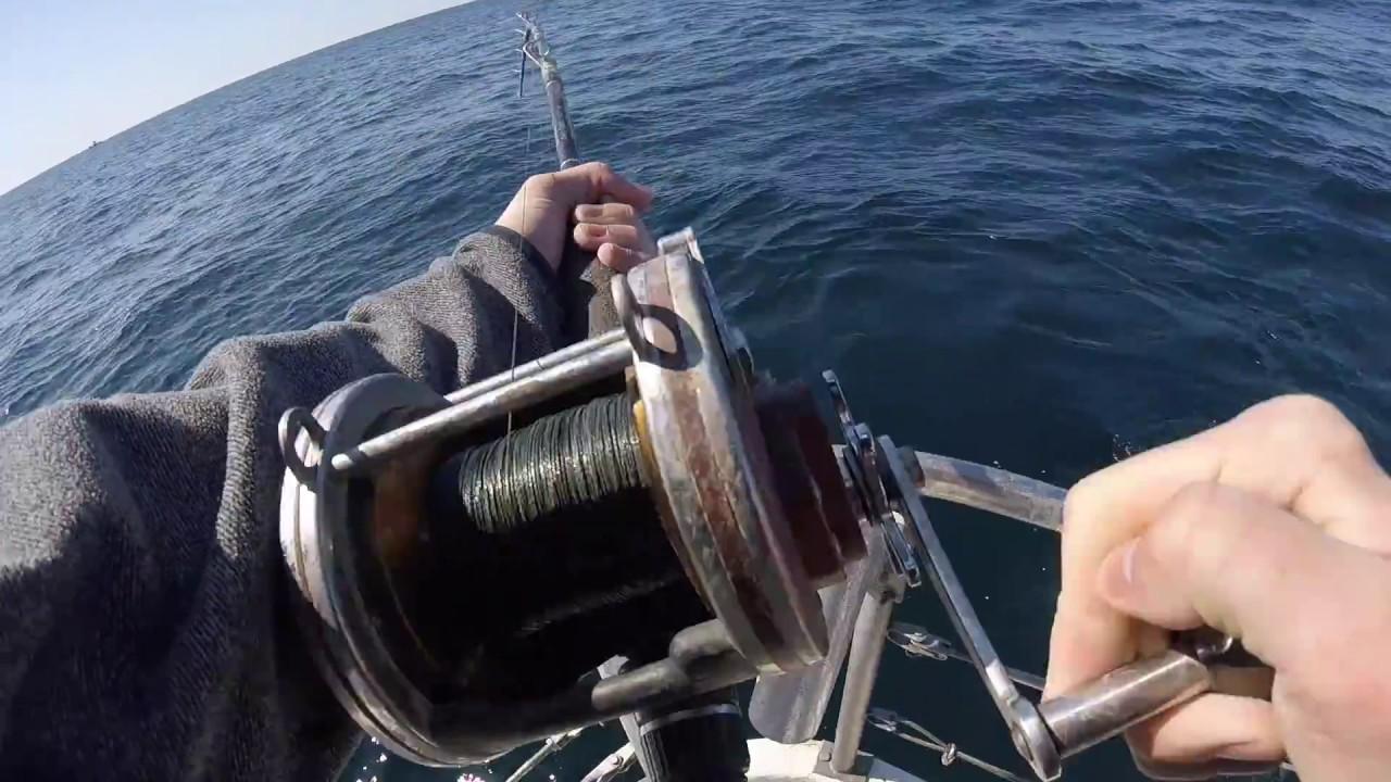 Shark fishing in destin florida youtube for Destin shark fishing