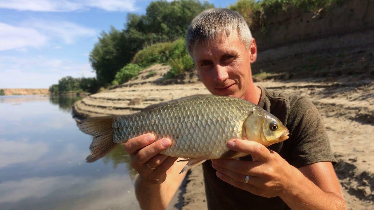 Рыбалка и отдых с семьей на реке Ахтуба. Клёв крупного карася на фидер .