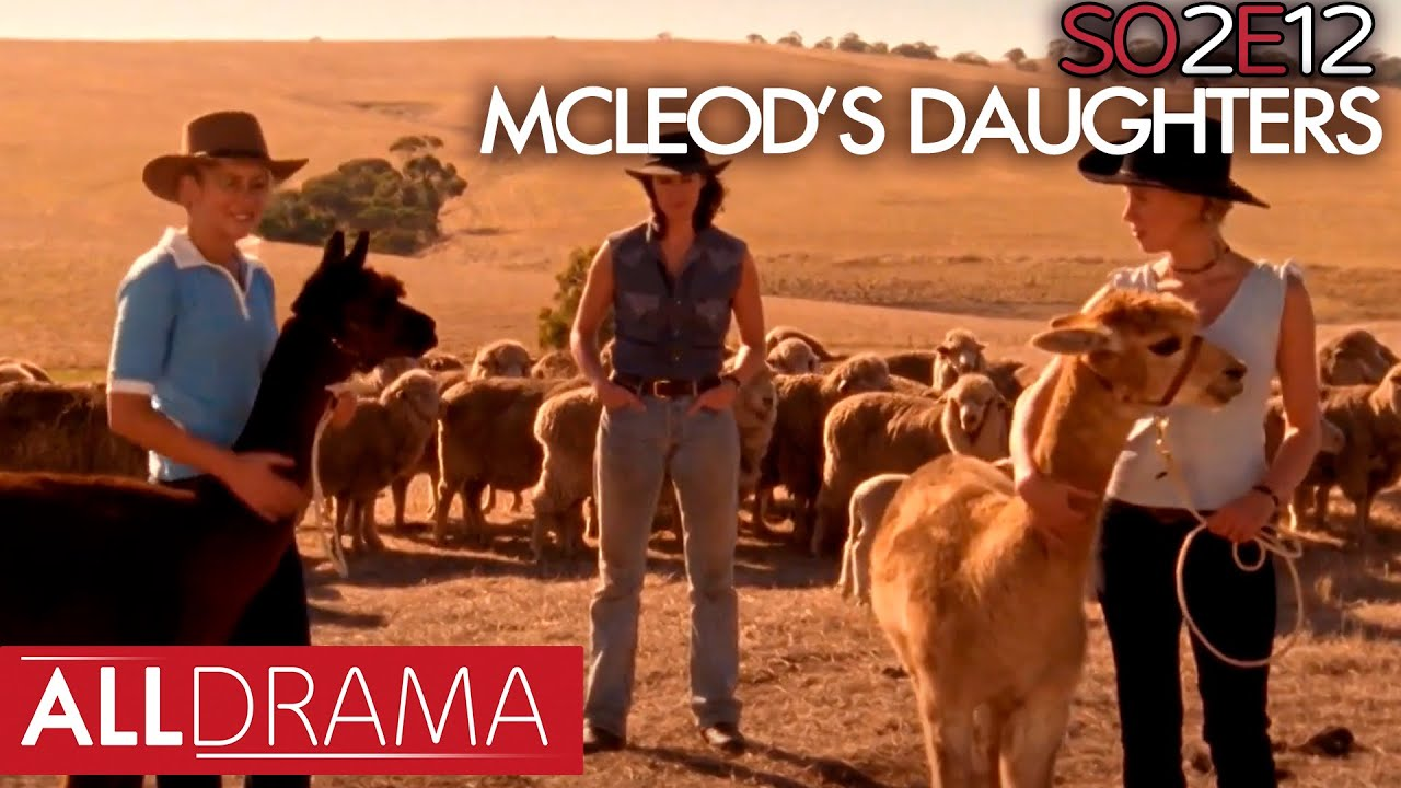 McLeod's Daughters   Hounded   S02 EP12   All Drama